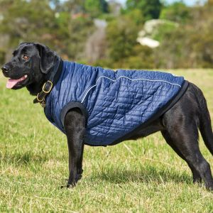 WeatherBeeta Puffer Dog Coat