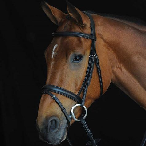 Collegiate Comfort Crown Fancy Stitched Raised Cavesson Bridle