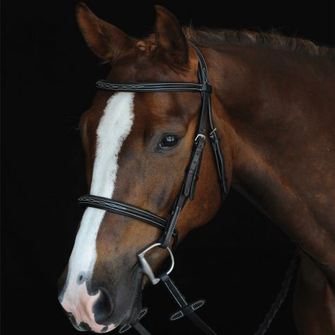Collegiate Mono Crown Fancy Stitched Raised Cavesson Bridle