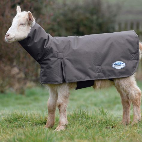 WeatherBeeta Goat Coat with Neck