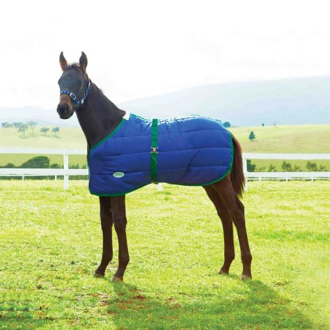 WeatherBeeta 420D Foal Standard Neck Medium