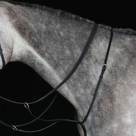 Collegiate Running Martingale IV
