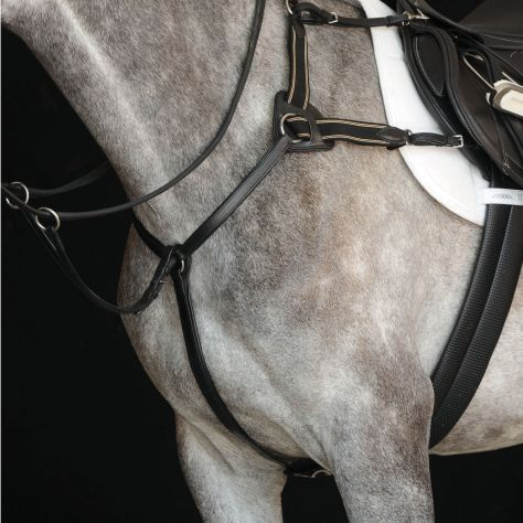 Collegiate 5-Point Breastplate IV