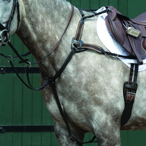 Collegiate Essential 5-Point Breastplate