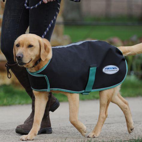WeatherBeeta Green-Tec 900d Dog Coat Lite Plus