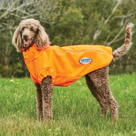 WeatherBeeta ComFiTec Active Dog Coat