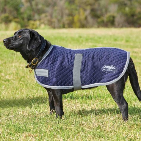 WeatherBeeta Thermic Dog Coat