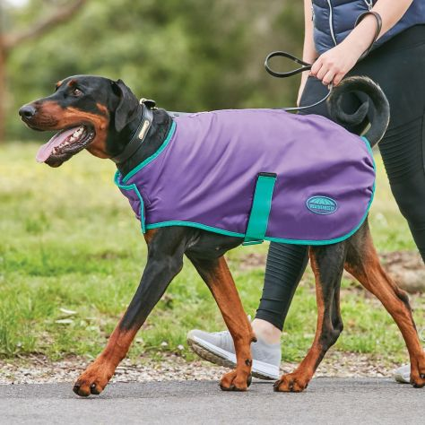 WeatherBeeta ComFiTec Windbreaker Free Dog Coat