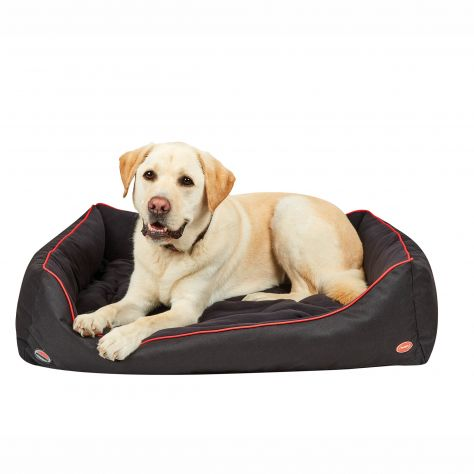 WeatherBeeta Therapy-Tec Dog Bed