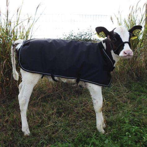 WeatherBeeta Calf Coat