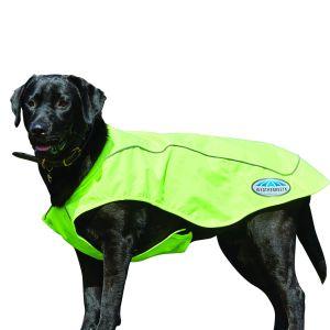 WeatherBeeta Reflective Exercise Dog Coat