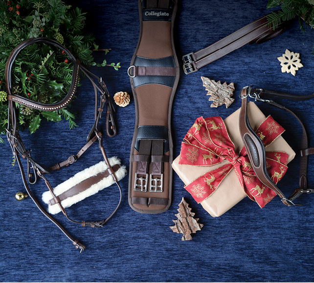 The Collegiate Saddlery Gift Guide is here!