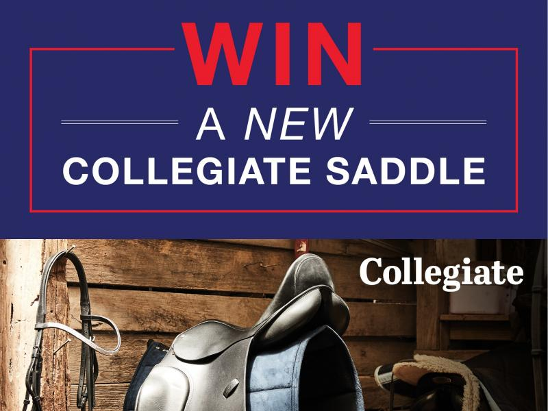 Win 1 of 2 Collegiate Honour Close Contact Saddles!