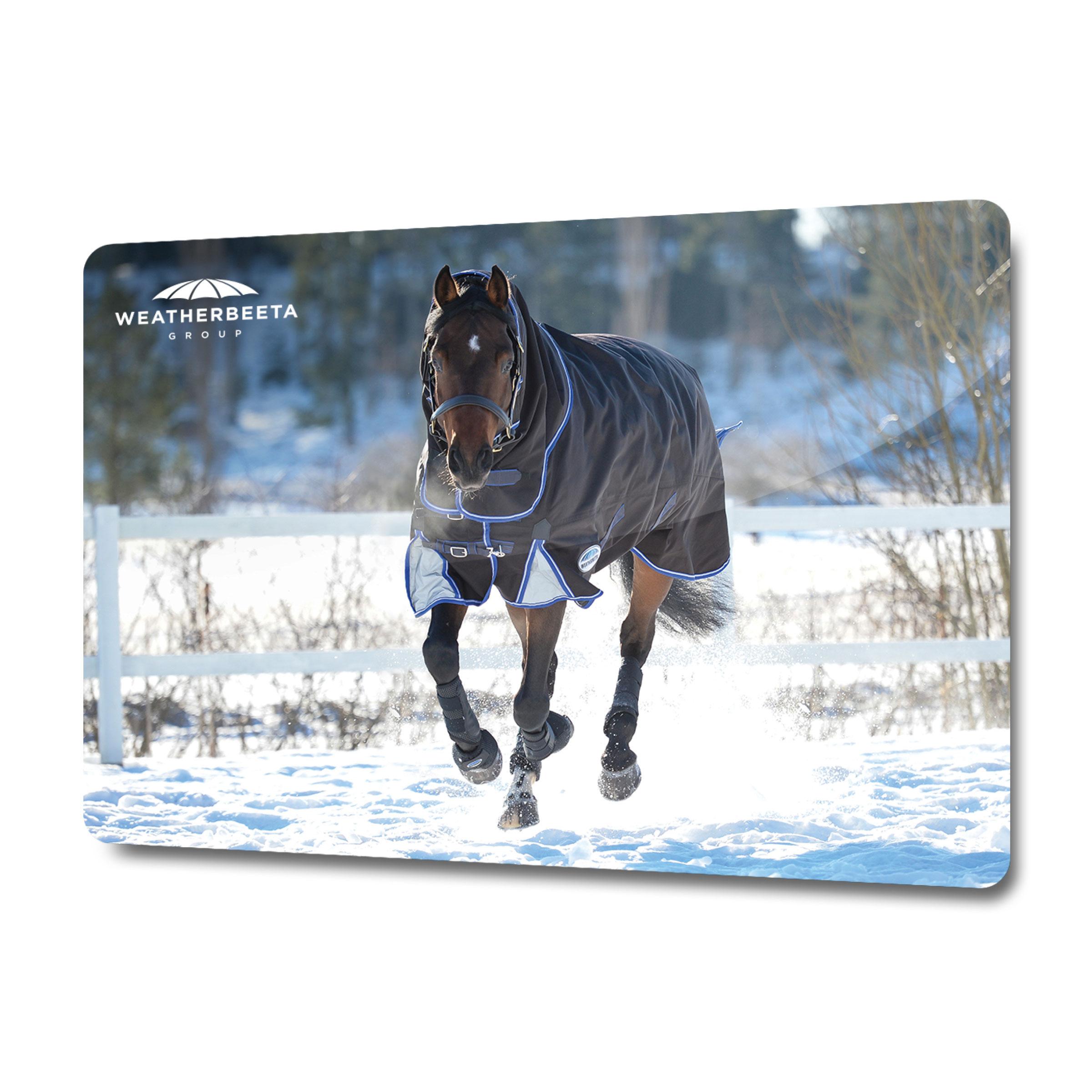 WeatherBeeta Horse