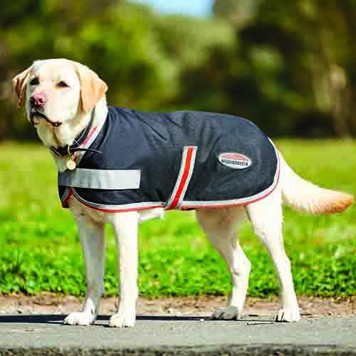 TTEC DOG COAT