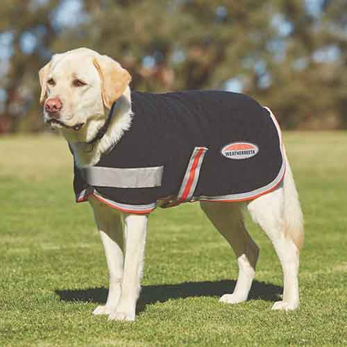 TTEC DOG FLEECE