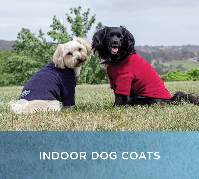 Shop Indoor Dog Coats