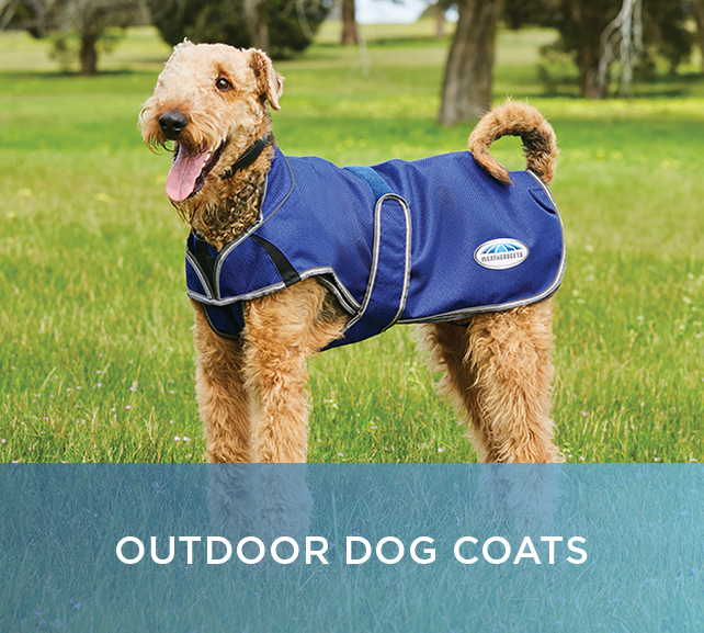 Shop Outdoor Dog Coats