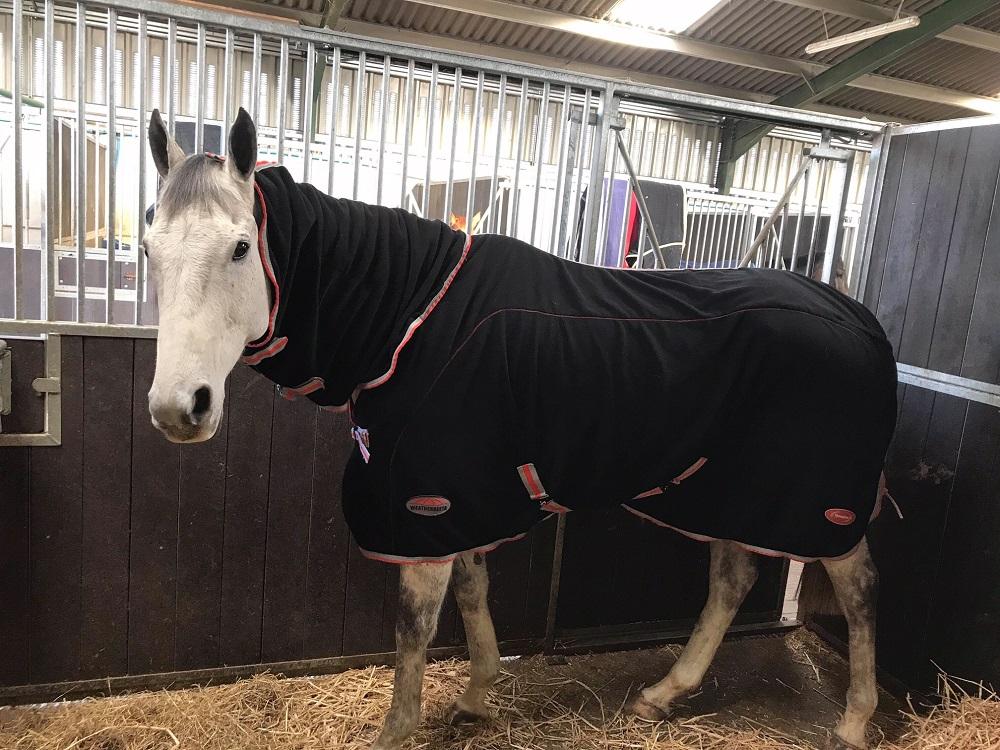 Cedric wearing the WeatherBeeta Therapy Tec