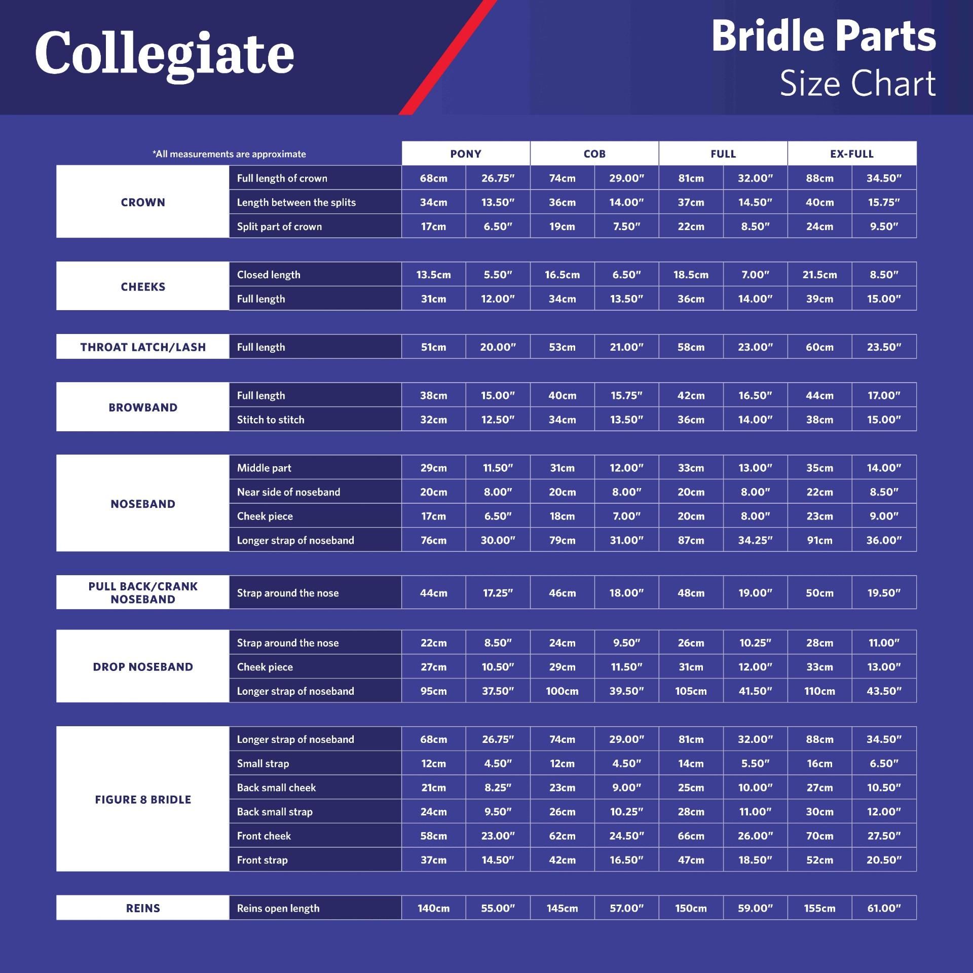Collegiate Bridle Size Chart