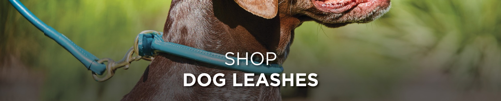 Shop WeatherBeeta Dog Leashes