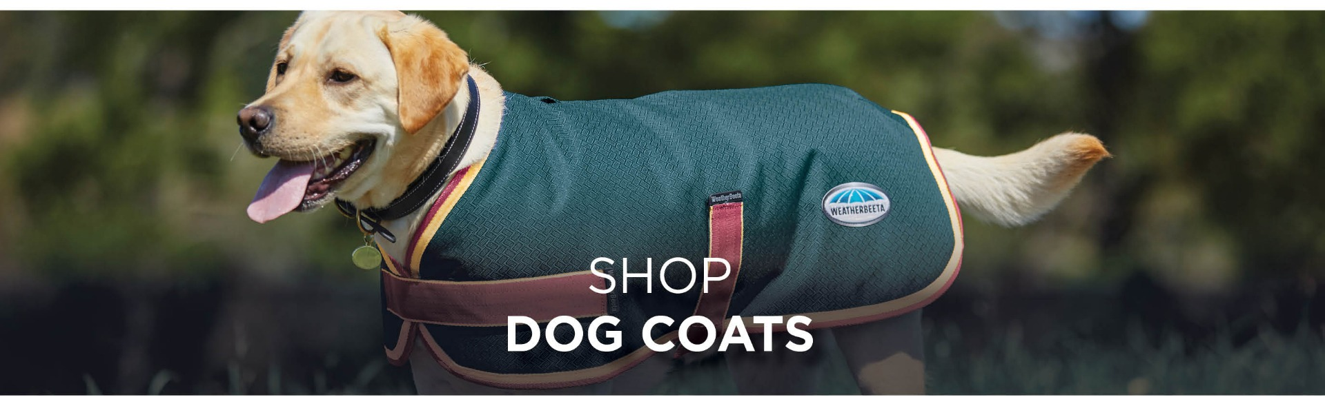 Shop WeatherBeeta Dog Coats