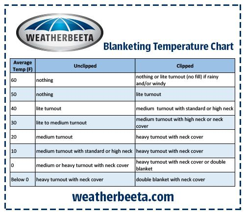 WeatherBeeta Temperature Chart