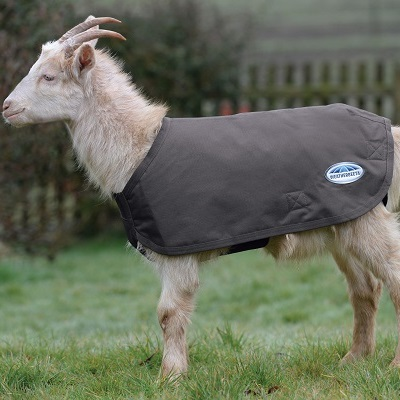 Goat Coats