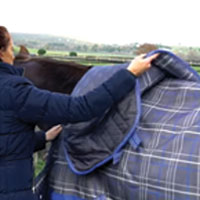 How to fit your Horse Blanket