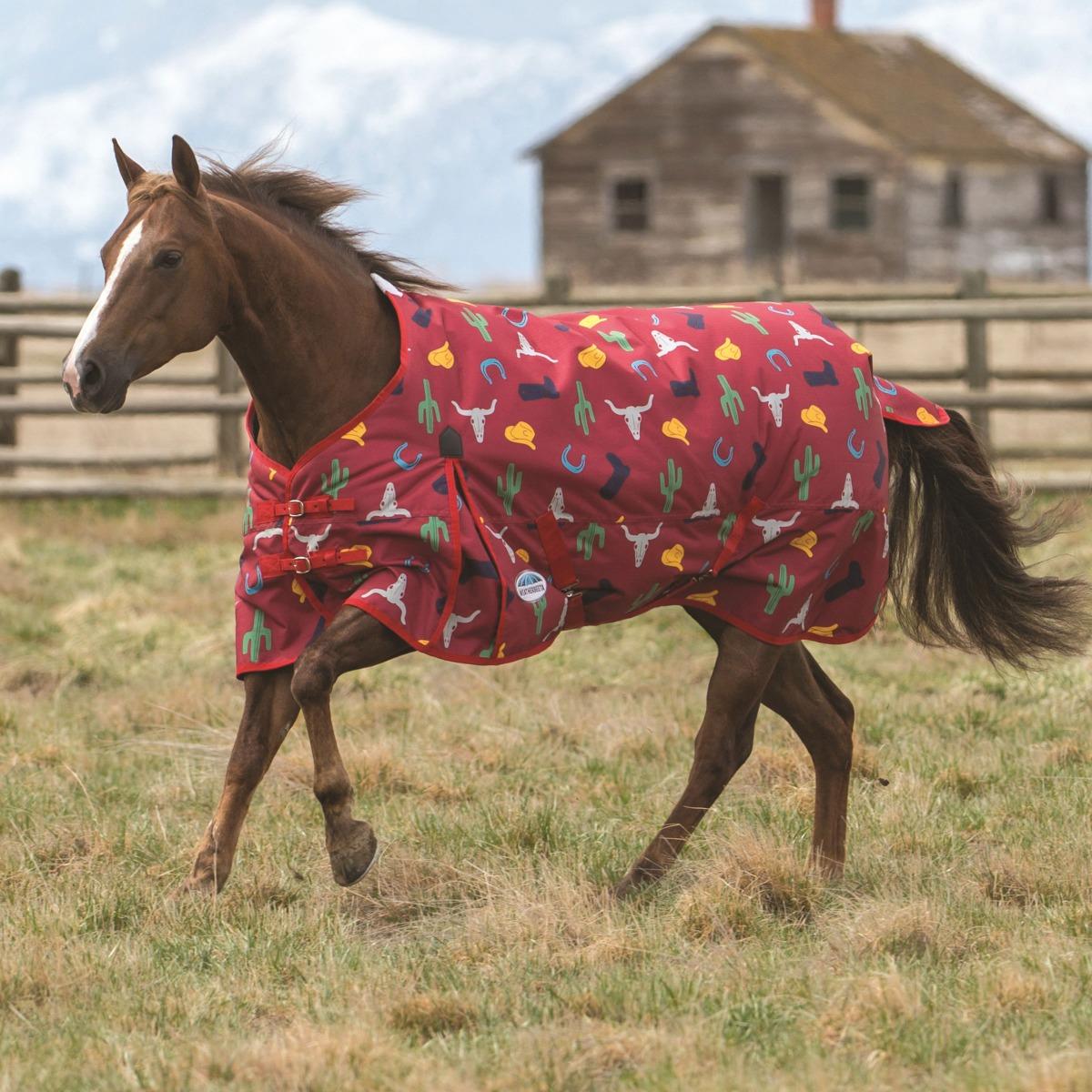 Western Blanket Cowboy