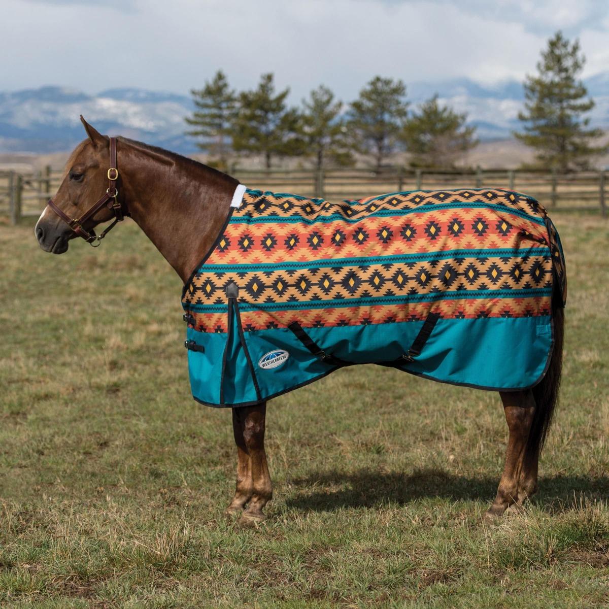 Western Range Navajo