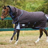 Why blanket your Horse